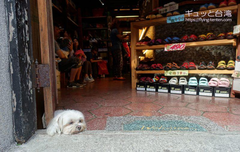 神農街の看板犬